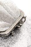 Försilvra handväskan arkivfoton