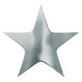 Försilvra stjärnan Royaltyfri Bild