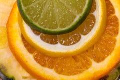 Förskärare av färgrika frukter för snitt - tätt övre Fotografering för Bildbyråer