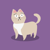 Förskräckt liten beige katt på violett bakgrund också vektor för coreldrawillustration vektor illustrationer