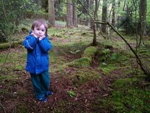 Förskräckt pojke i mörk skog Arkivbild
