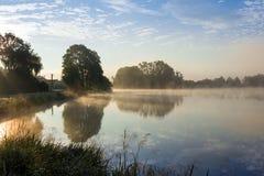 Försommarmorgon på dammet arkivfoton