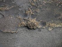 förstörd asfalt royaltyfri foto