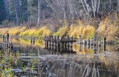 förstörd bro Arkivfoto