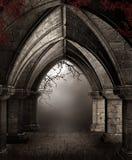 Förstörd kyrka med vines royaltyfri illustrationer