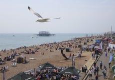 Förstörd västra pir för Brighton East Sussex UK sommartid Arkivbilder