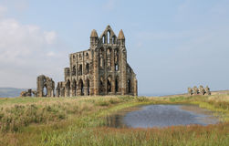Förstörda medeltida Whitby Abbey Royaltyfria Bilder