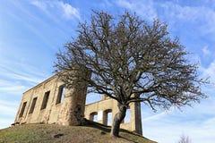 Förstörda väggar av den Kamyk sommarvillan vid det stora trädet arkivbild