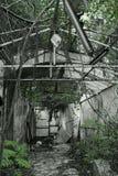 Förstört växthus Royaltyfria Foton