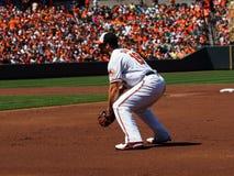 Första Baseman Chris Davis för Baltimore Orioles Royaltyfri Fotografi