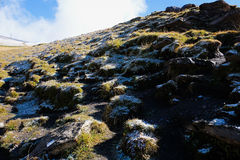 Första berg, Schweiz Arkivfoto