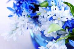 första blommafjäder Arkivbilder