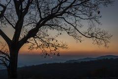 Första förslag av solen på soluppgång royaltyfri foto