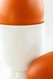 första fokus två för bruna ägg Arkivbild