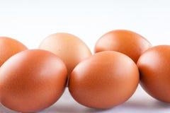 första fokus två för bruna ägg Royaltyfri Foto