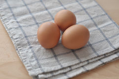 första fokus två för bruna ägg Royaltyfria Bilder