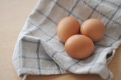 första fokus två för bruna ägg Fotografering för Bildbyråer