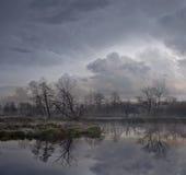 Första frost på floden Royaltyfri Bild