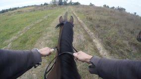 Första personsikt av att rida en häst Punkt av sikten av ryttaren som går på hingsten på naturen Pov-rörelse close upp Royaltyfri Fotografi