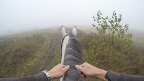 Första personsikt av att rida en häst Punkt av sikten av ryttaren som går på hingsten på naturen Pov-rörelse close upp Royaltyfri Foto