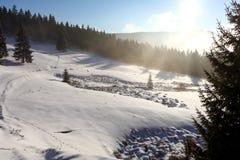 Första snö Arkivbilder