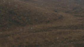 Första snö på bakgrunden av höstkullar arkivfilmer
