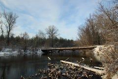 Första snö på den sena Autumn Forest River Royaltyfria Foton