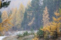 Första snö på Lake Baikal royaltyfria bilder