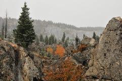 Första snöfall i yellowstone Fotografering för Bildbyråer