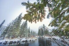 Första snöfall på den Siberian floden för taiga arkivbild