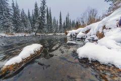 Första snöfall på den Siberian floden för taiga royaltyfri foto