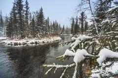 Första snöfall på den Siberian floden för taiga arkivfoto