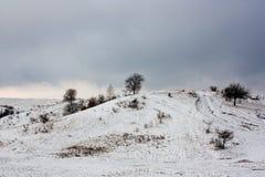första snow Arkivfoton