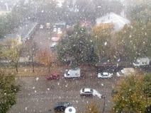 första snow Royaltyfri Bild