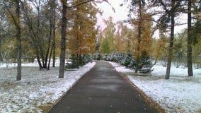 första snow Fotografering för Bildbyråer
