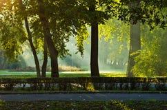 Första solstrålar på höstmorgonen i Topcider parkerar royaltyfri bild