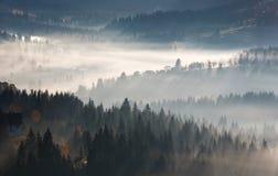 Första soluppgångstrålar av solen i Carpathian berg Arkivfoto