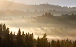 Första soluppgångstrålar av solen i Carpathian berg Royaltyfria Foton