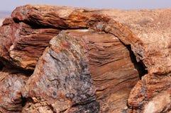 Förstenad skog, Arizona, USA Royaltyfria Bilder