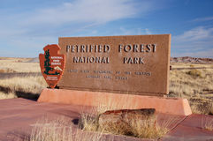 Förstenad skog, Arizona, USA Fotografering för Bildbyråer