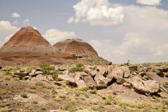 förstenad tepee för Forest Hills nationalpark arkivbild