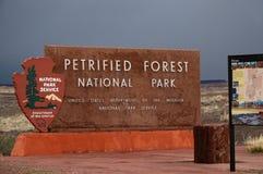 Förstenade Forest National Park i Arizona, USA royaltyfria foton