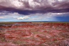 Förstenade Forest National Park, USA Arkivbild