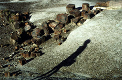 förstenas arizona skognational Fotografering för Bildbyråer