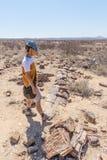 Förstenas och mineralized trädstam Turist i den berömda förstenade Forest National Park på Khorixas, Namibia, Afrika milli 280 Royaltyfri Bild