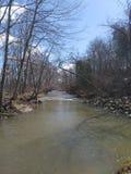 Förstenas vårfloden i Kenosha Wisconsin fotografering för bildbyråer