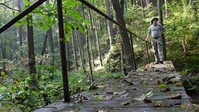 Förster auf einer Brücke im Wald stock footage