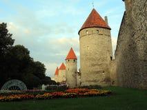 Försvarvallar runt om den gamla staden Tallinn royaltyfri foto