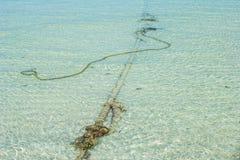 Förtöja repet in i havet Arkivbilder
