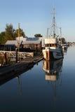 Förtöjde Fishboat, delta, British Columbia Arkivbild